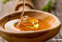 spirali di miele