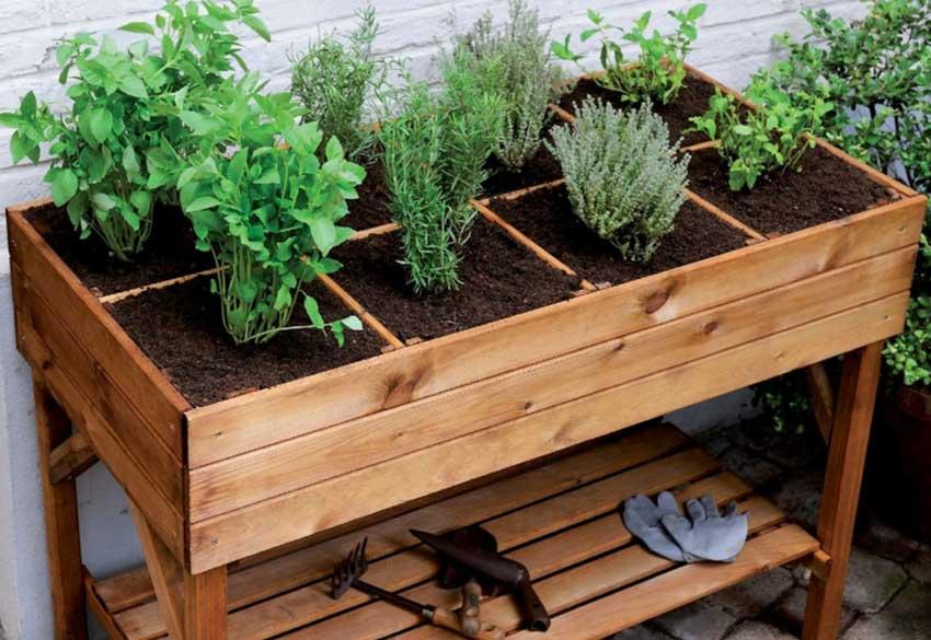 Come organizzare un orto in casa sfruttando il balcone